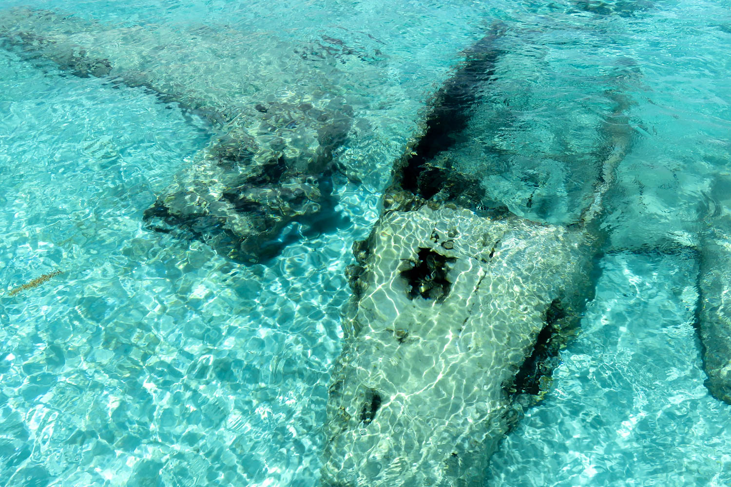 A Bahamas Plane crash in the 1970s during the Pablo Escobar drug trafficking years. This Bahamas underwater plane is at Staniel Cay in the Exumas in Bahamas.