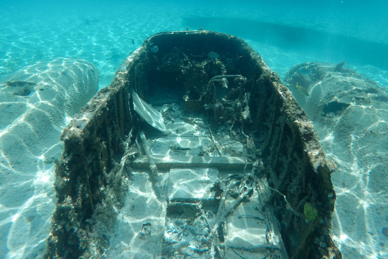 Bahamas Plane wreck Exuma is a Bahamas plane crash from the 1970s that left this Bahamas underwater plane for visitors to enjoy from Staniel Cay.
