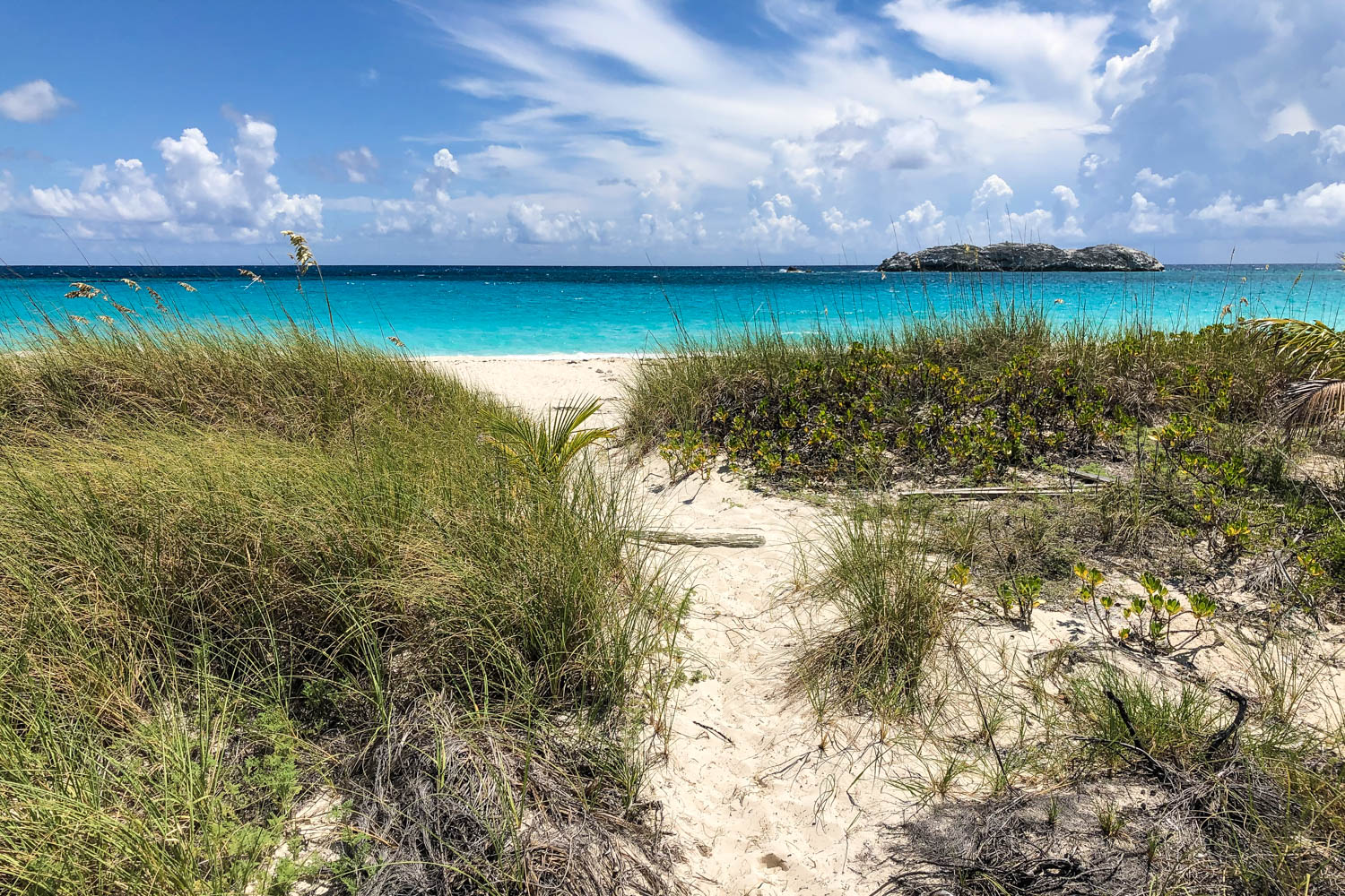Compass Cay Beach Bahamas is located on the same island as the Compass Cay Marina. Visitors can walk to the Compass Cay Beach from the Swimming with Nurse Sharks experience. This is one of the top beaches in the Bahamas.