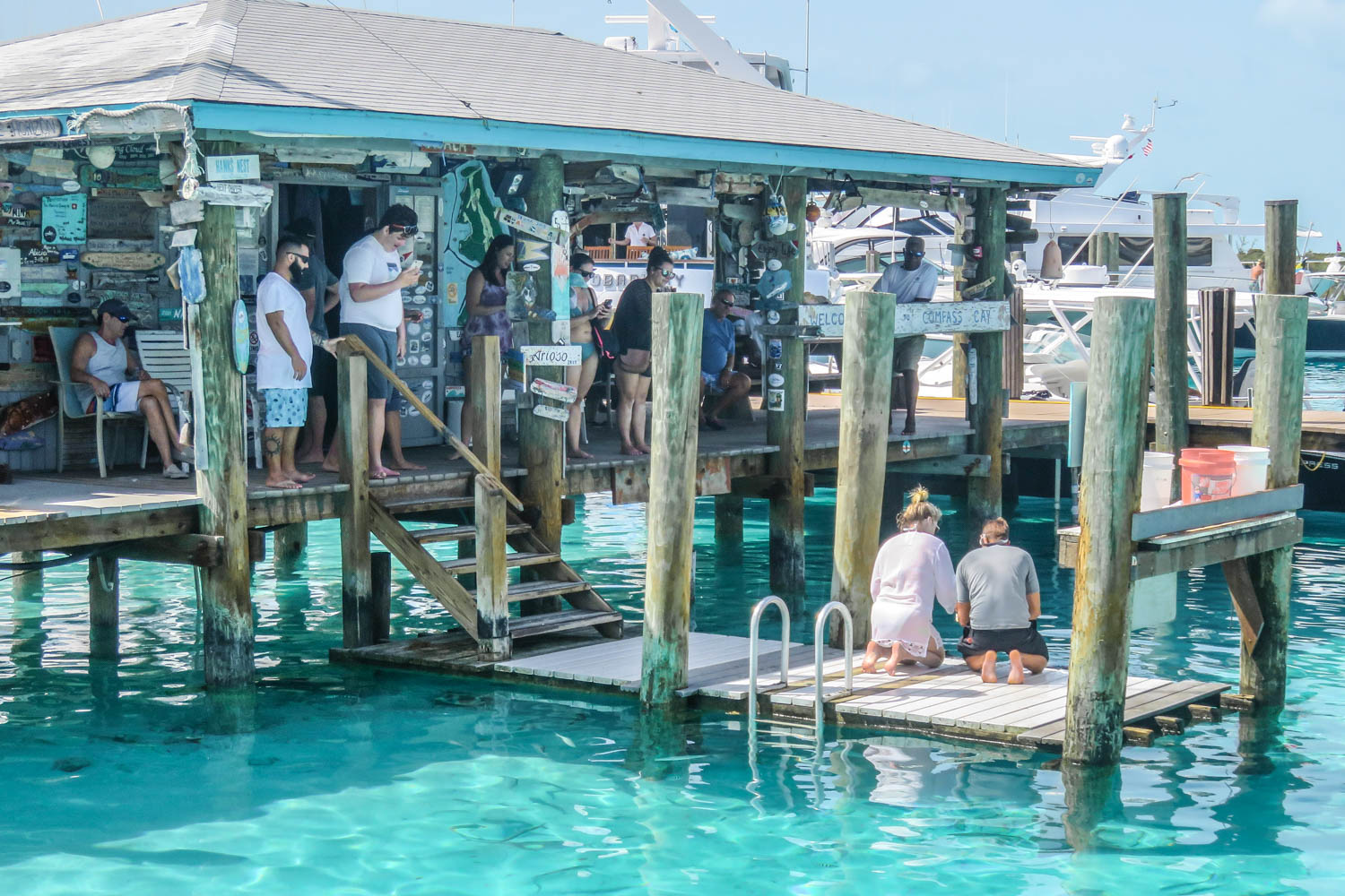 Compass Cay Marina Bahamas Swim with Sharks adventure in the Exuma Islands. The Compass Cay Sharks are Nurse Sharks.