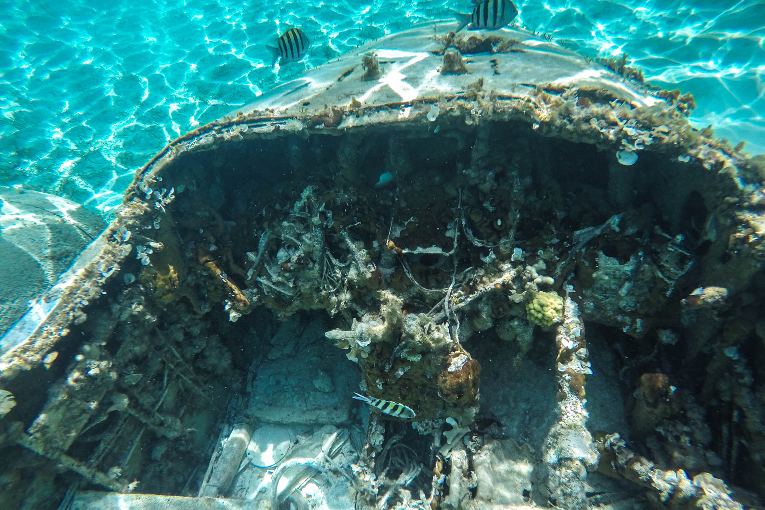Exuma Plane wreck cockpit is easily accessible and you can take great photos of this Staniel Cay plane wreck on a boat tour or day trip.