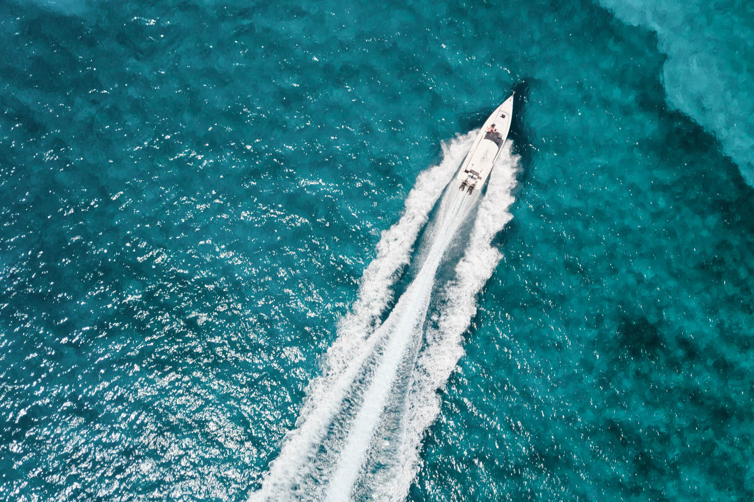 How to get to Pig Beach Bahamas by Boat on a Pig Island tours from Nassau. Take a boat ride to the Bahamas Swimming Pigs at Big Major Cay and Staniel Cay