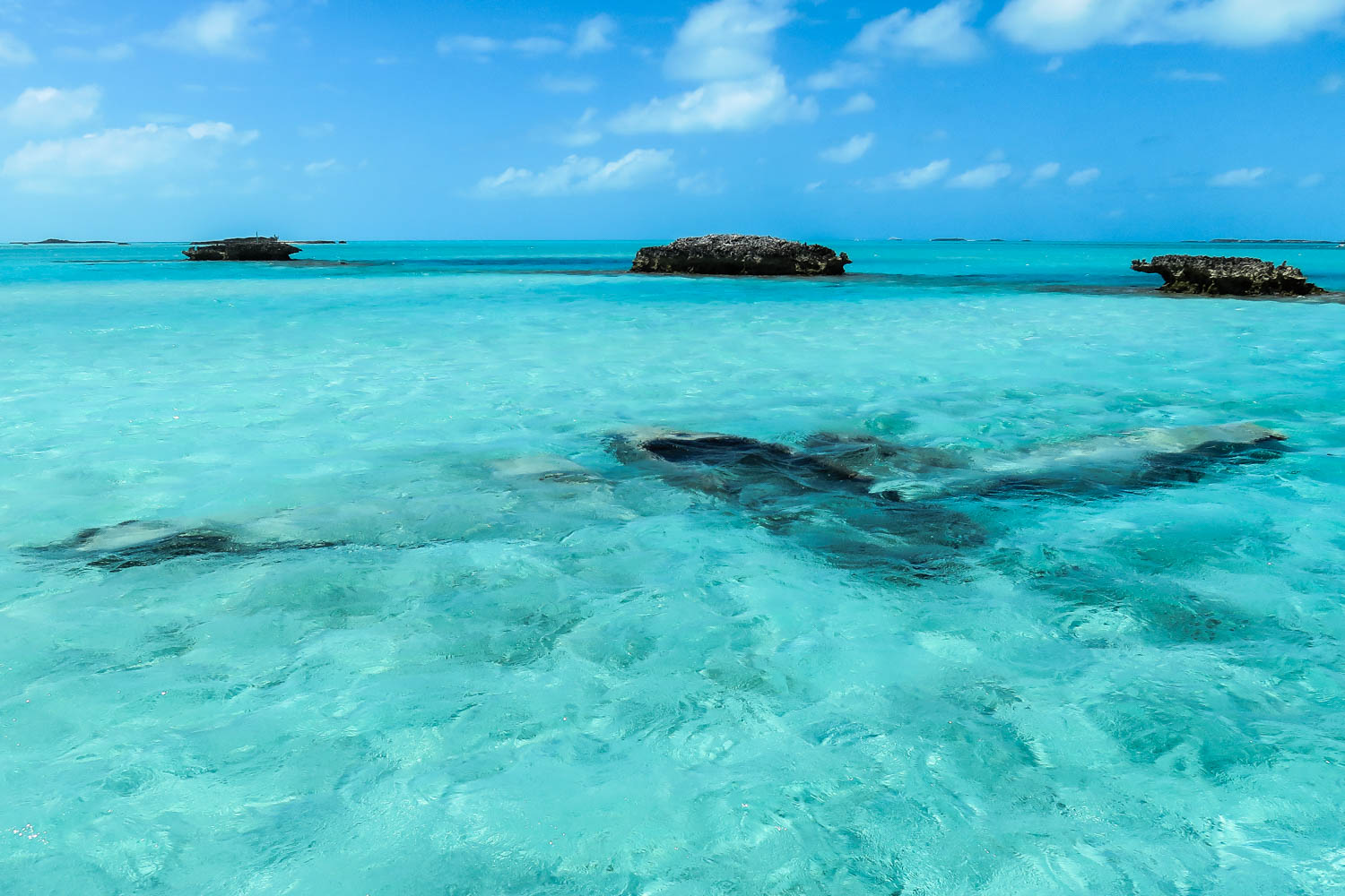 Staniel Cay Plane Wreck is an underwater plane wreck located next to Staniel Cay. This Bahamas underwater plane wreck can be easily reach by boat tour.
