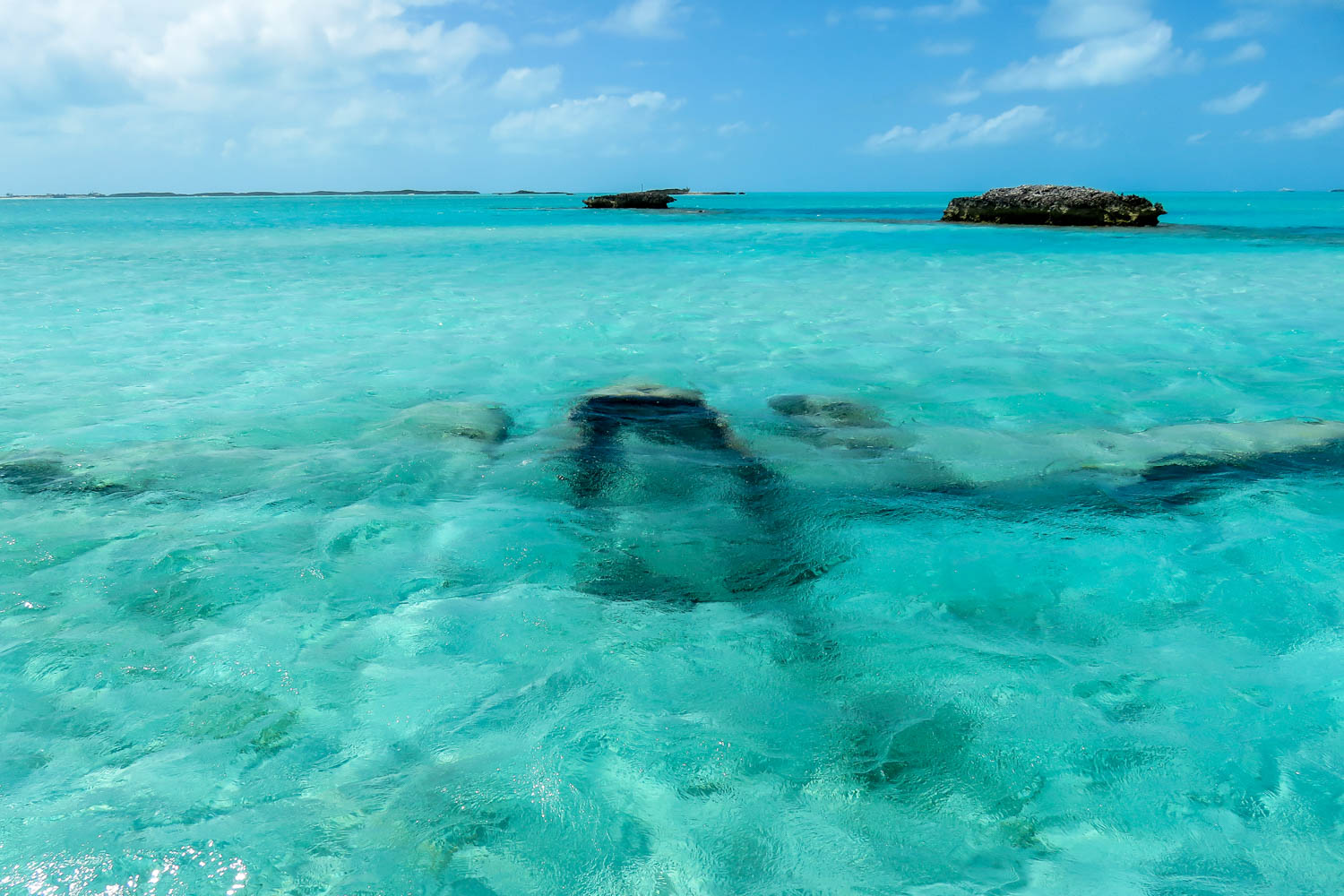 Jump into the turquoise waters on your Nassau port excursions. Explore the beauty of Nassau Bahamas shore excursions.