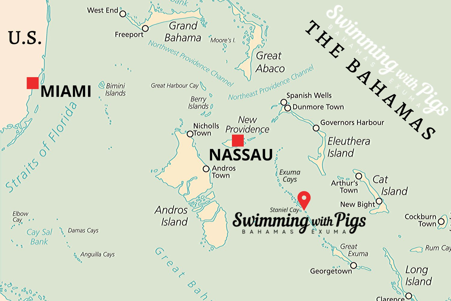 Pig Island tours from Nassau take roughly thirty minutes by air. Where is Pig Island? Just north of Staniel Cay.