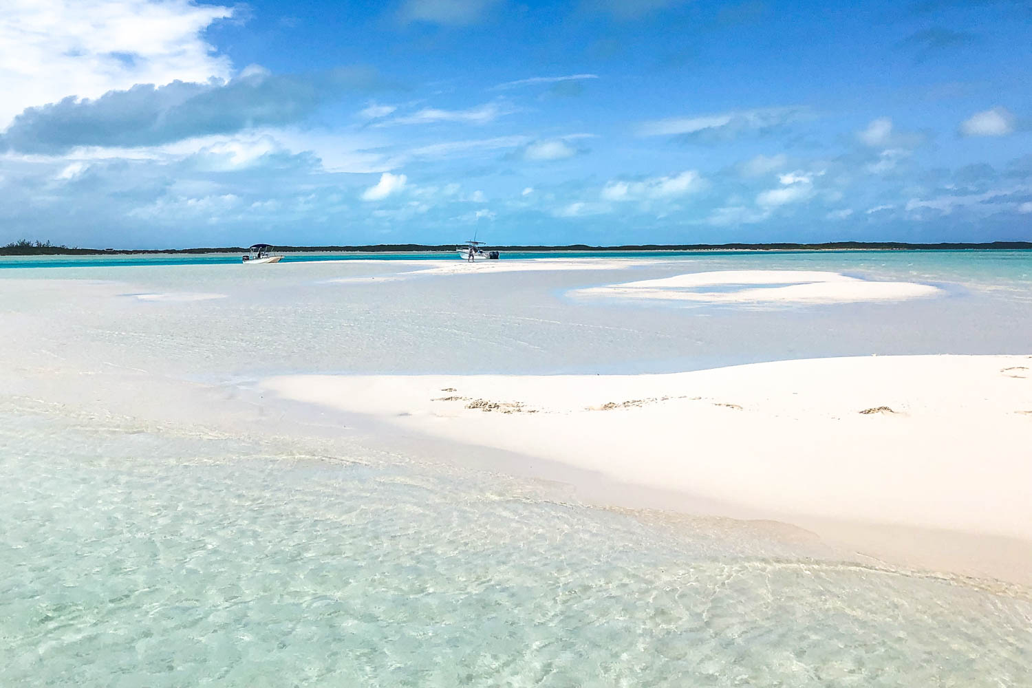 The Exuma pig tour from Nassau will take you past hidden sand bars. Also, you will see Pig Beach Exuma pigs on your Pig Island tour.