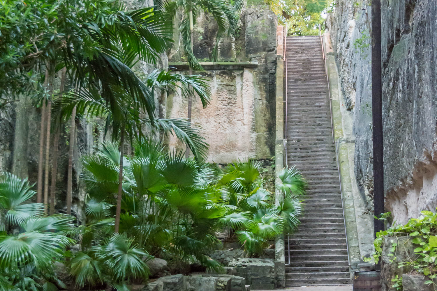 The Queen's Staircase is just one of many things to do in Nassau on a cruise. You have plenty of time and places to visit in Bahamas. A tourist favorite of things to do in Nassau Bahamas.