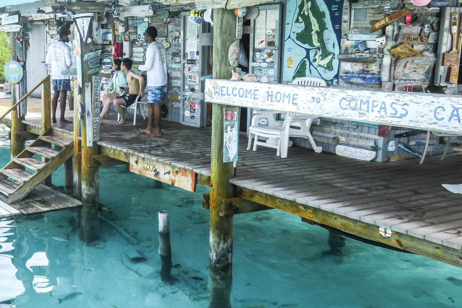 The Compass Cay sharks are used to human interaction. Bahamas sharks can be aggressive if treated wrong.