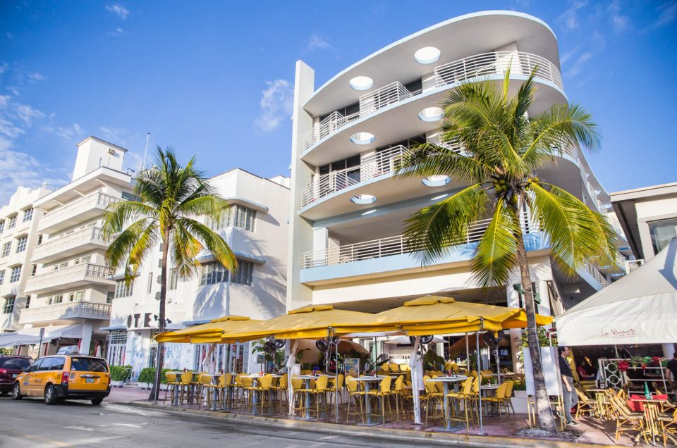 Explore the Top 7 Things to do in South Florida