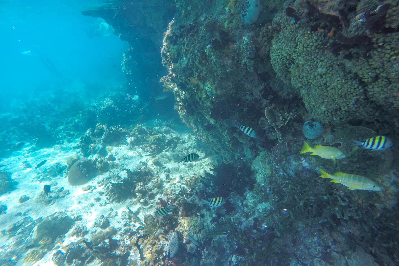 The impressive Thurnderball Grotto Bahamas is filled with adventure. Thunderball Grotto Exuma is the same in the James Bond Bahamas Thunderball film.