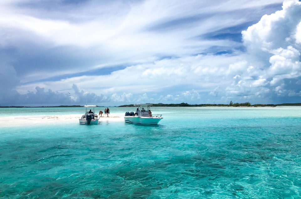 Best Exuma Trip from Nassau to the Bahamas Swimming Pigs
